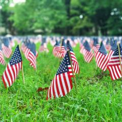 Mini American flags stuck in ground